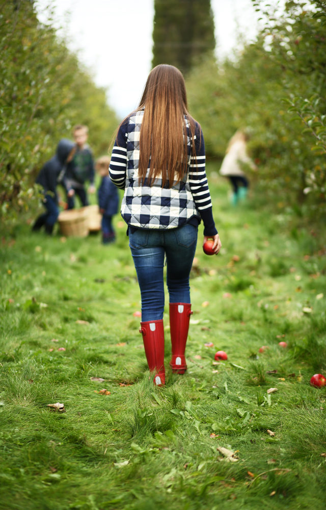 Apple Picking Outfit Plaid Puffer Vest And Striped Sweater