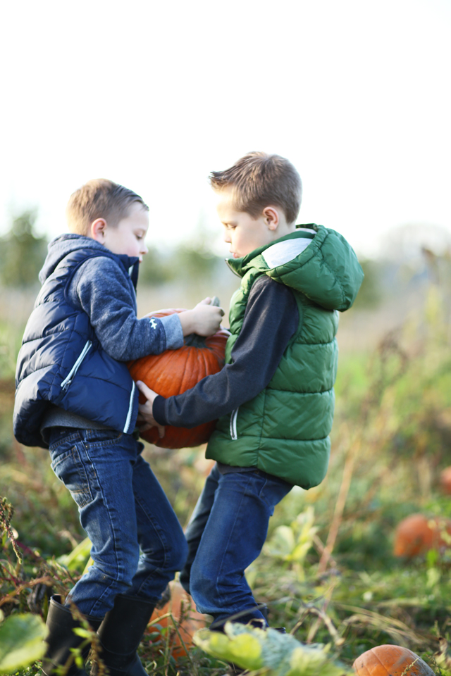 brothers in a pumpkin patch