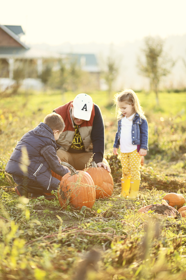 dad and kids in a pumpkin patch